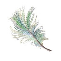 variegated feather machine embroidery design