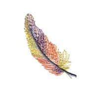 feather feathers plume down machine embroidery design for variegated thread designs needle passion embroidery needlepassion npe