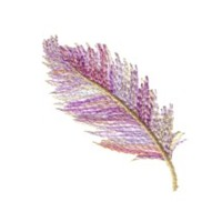 feather machine embroidery design for variegated thread multicolour multicoloured thread art pes hus dst needle passion embroidery npe