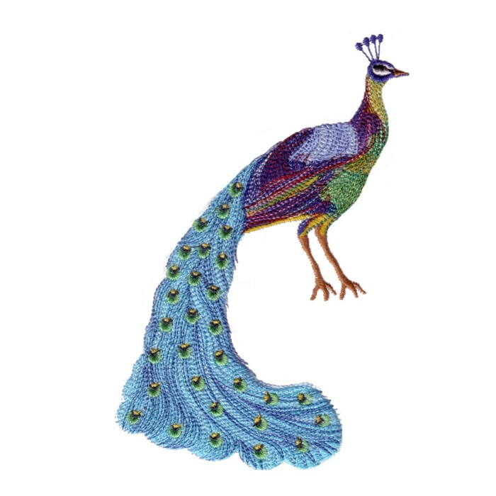 The King Of Birds Peacock Machine Embroidery Design For Variegated